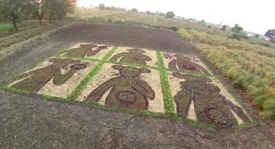Land Art No. 5